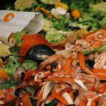 Food waste, UW Sustainability