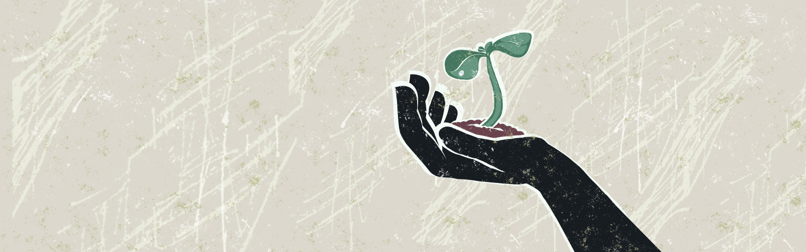 Illustration showing plant growing out of soil, being held by black hand