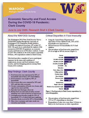 WAFOOD Survey Brief 4 on Clark County - document preview thumbnail