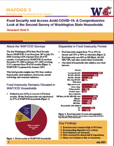 Preview of WAFOOD Brief 9 first page of report