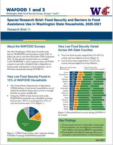 Preview of WAFOOD Brief 11 report